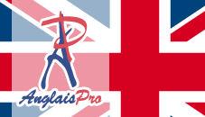 logo anglais pro